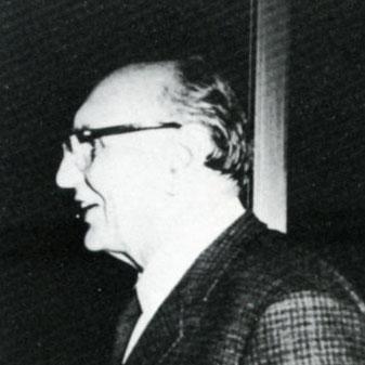 Gastone Meldolesi